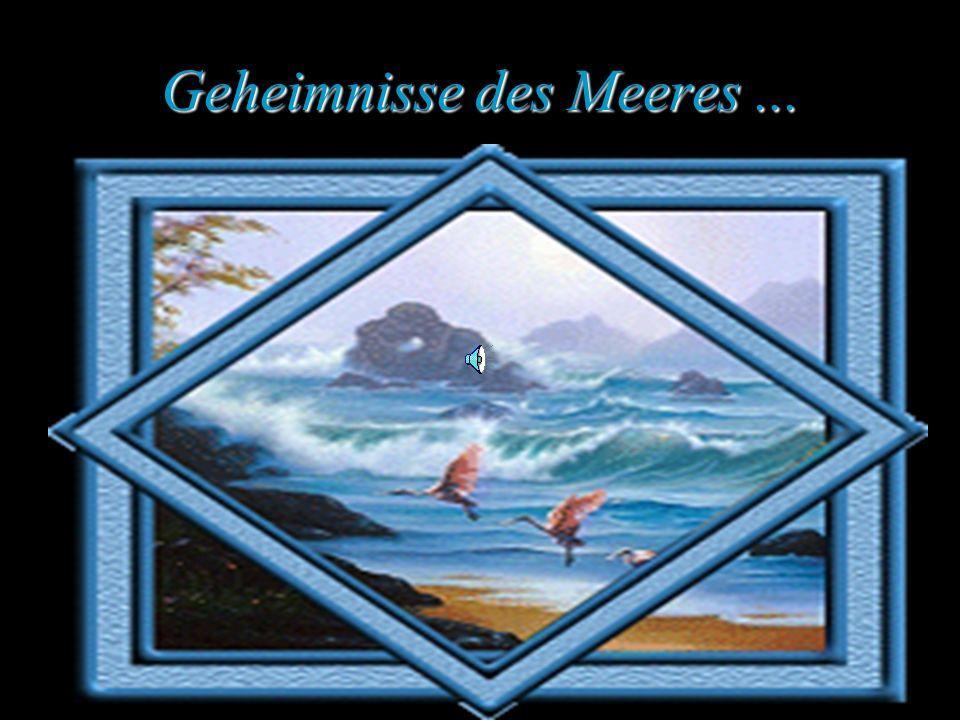 Geheimnisse des Meeres ...