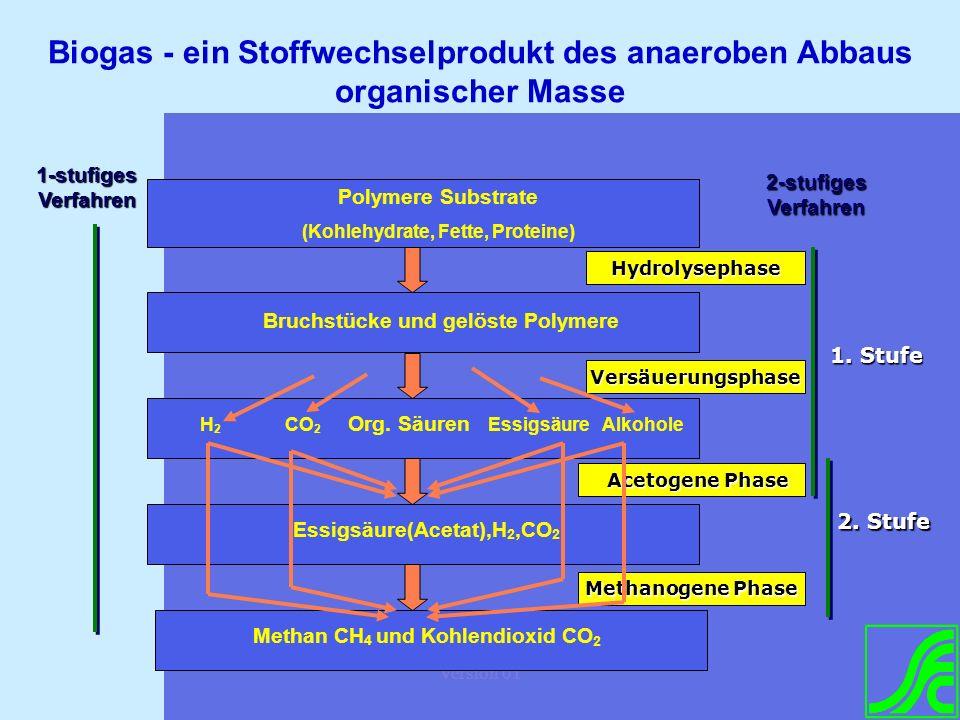 Biogas - ein Stoffwechselprodukt des anaeroben Abbaus organischer Masse