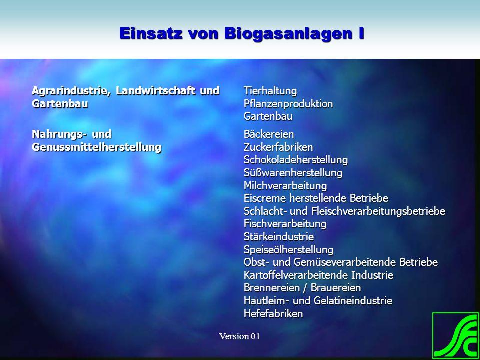 Einsatz von Biogasanlagen I