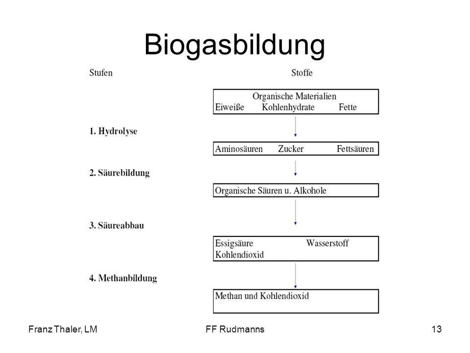 Biogasbildung Franz Thaler, LM FF Rudmanns