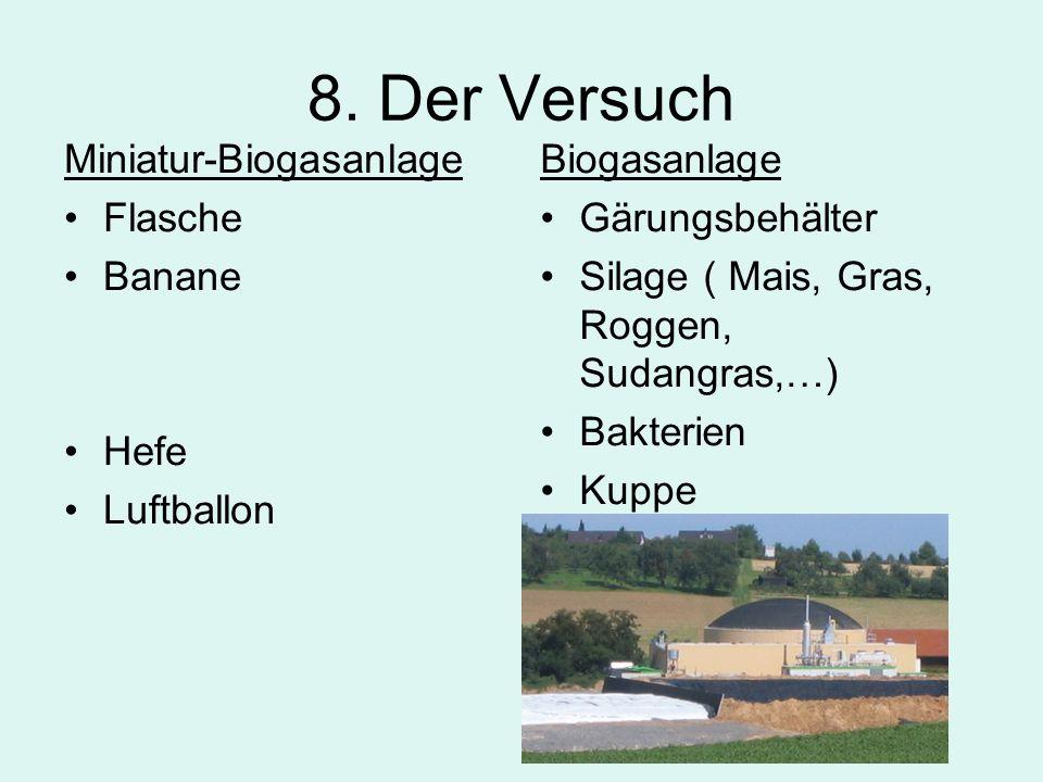 8. Der Versuch Miniatur-Biogasanlage Flasche Banane Hefe Luftballon