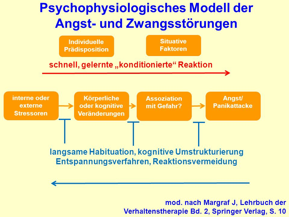 Psychophysiologisches Modell der Angst- und Zwangsstörungen