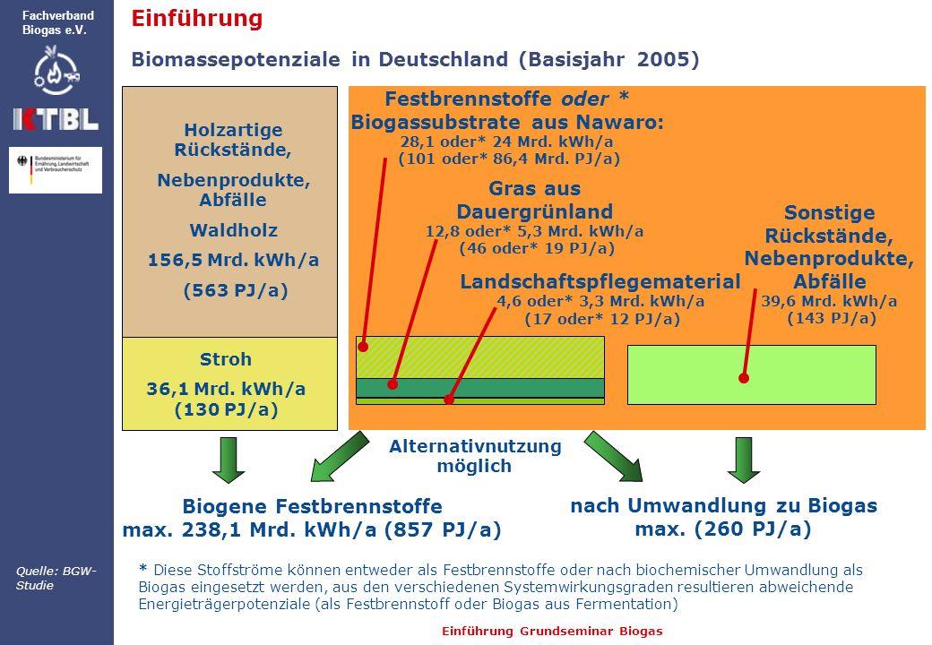 Einführung Biomassepotenziale in Deutschland (Basisjahr 2005)