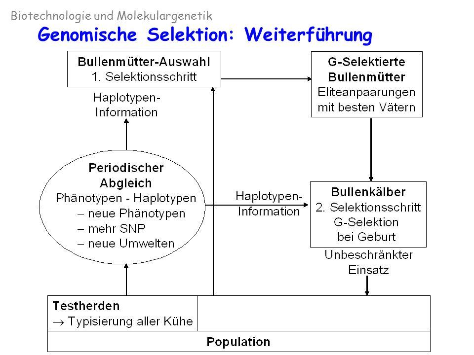 Genomische Selektion: Weiterführung