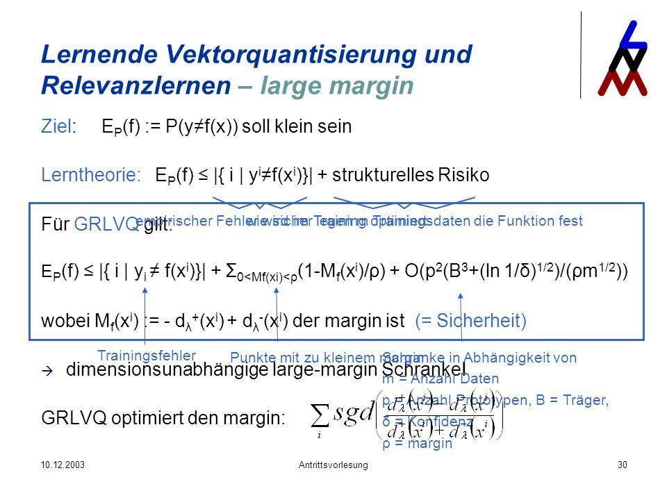 Lernende Vektorquantisierung und Relevanzlernen – large margin