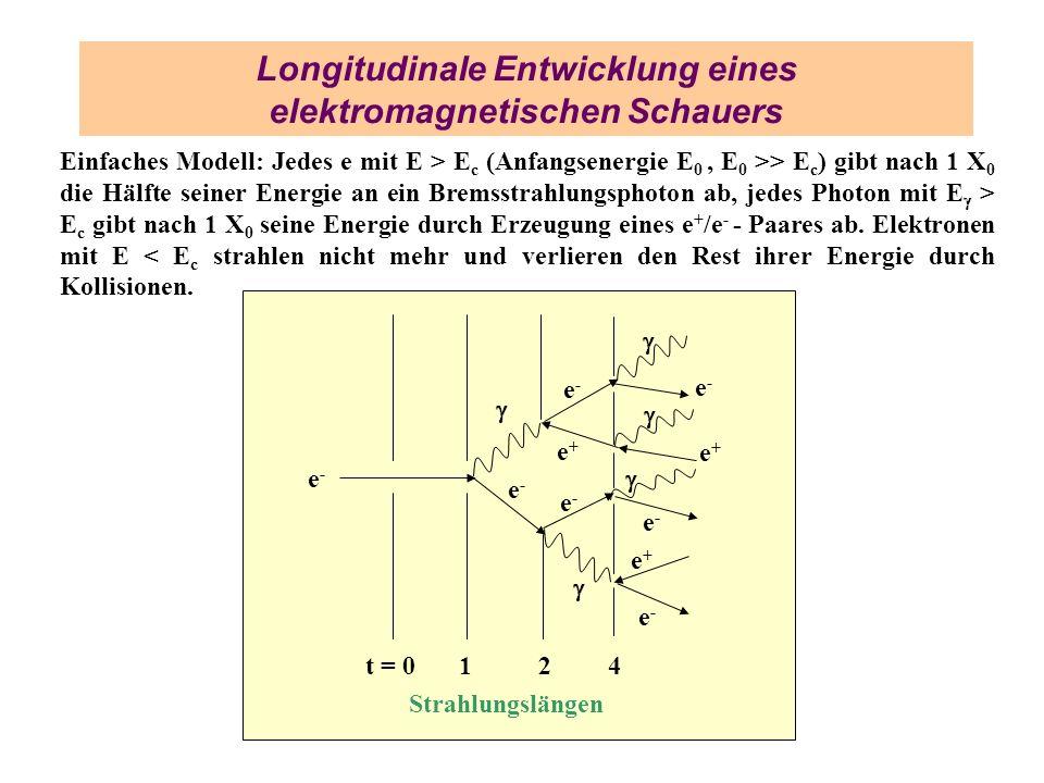 Longitudinale Entwicklung eines elektromagnetischen Schauers
