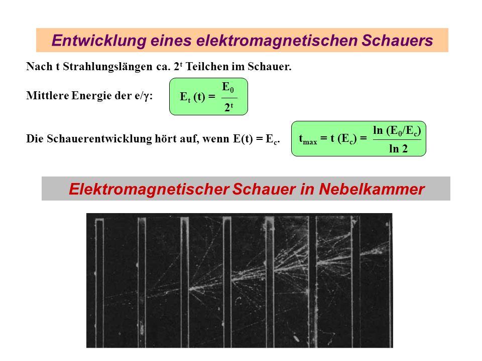 Entwicklung eines elektromagnetischen Schauers