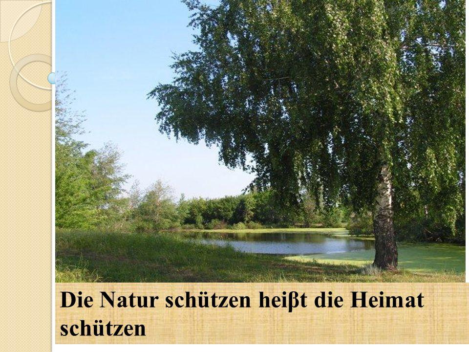 Die Natur schützen heiβt die Heimat schützen