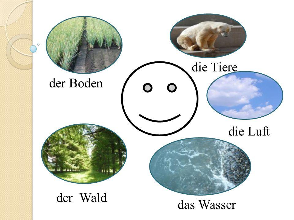 die Tiere der Boden die Luft der Wald das Wasser