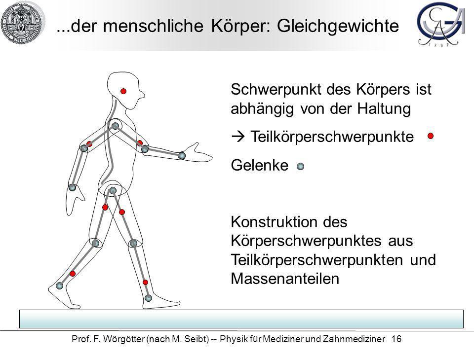 ...der menschliche Körper: Gleichgewichte
