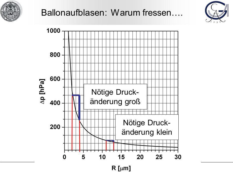 Ballonaufblasen: Warum fressen….