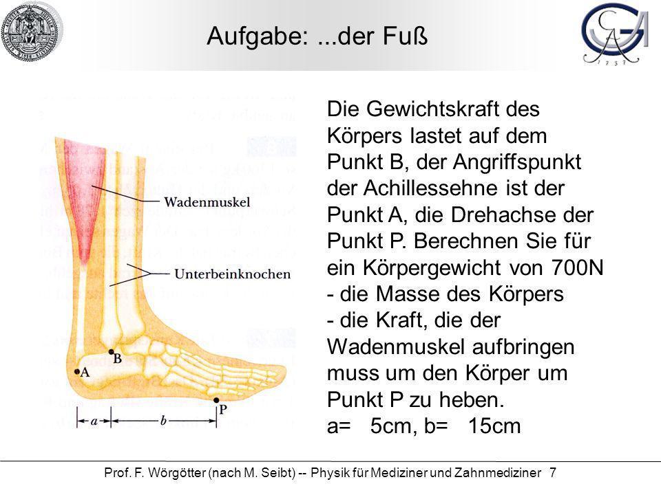 Aufgabe: ...der Fuß