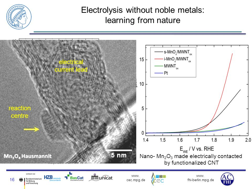 Electrolysis without noble metals: learning from nature