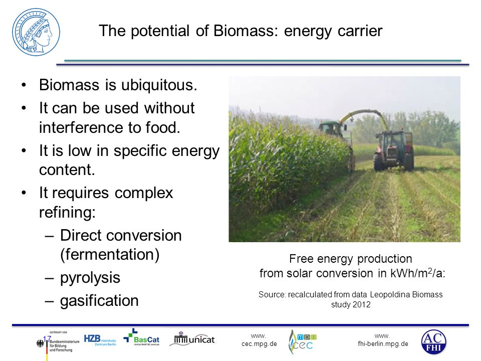 The potential of Biomass: energy carrier