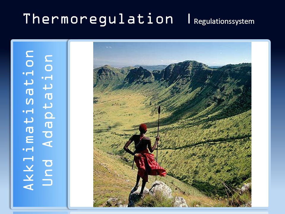 Thermoregulation |Regulationssystem