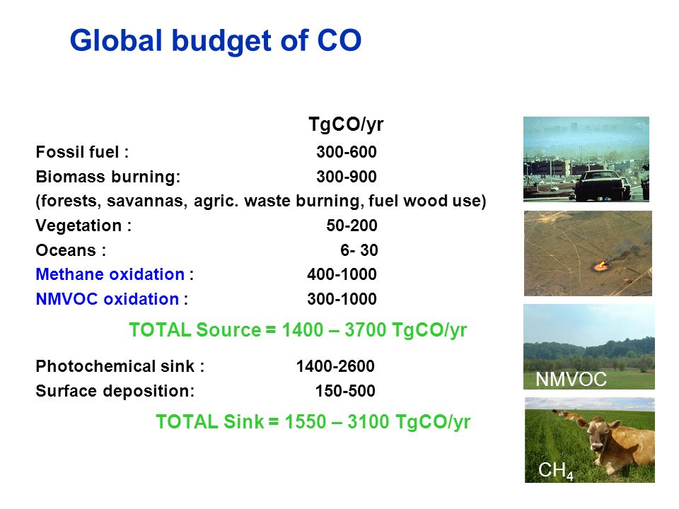 TOTAL Source = 1400 – 3700 TgCO/yr