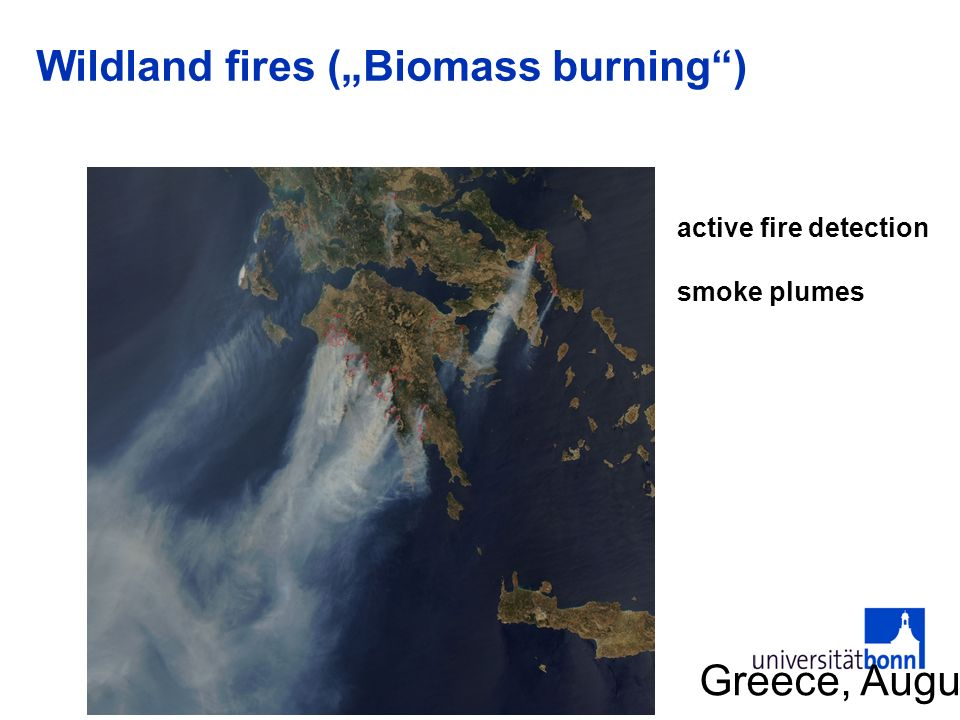 "Wildland fires (""Biomass burning )"