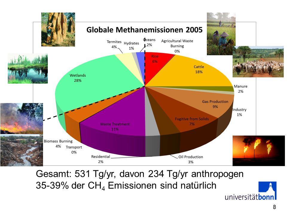 Gesamt: 531 Tg/yr, davon 234 Tg/yr anthropogen