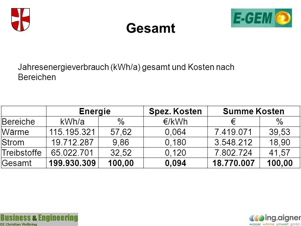 Gesamt Jahresenergieverbrauch (kWh/a) gesamt und Kosten nach Bereichen
