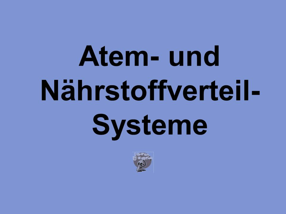 Atem- und Nährstoffverteil-Systeme