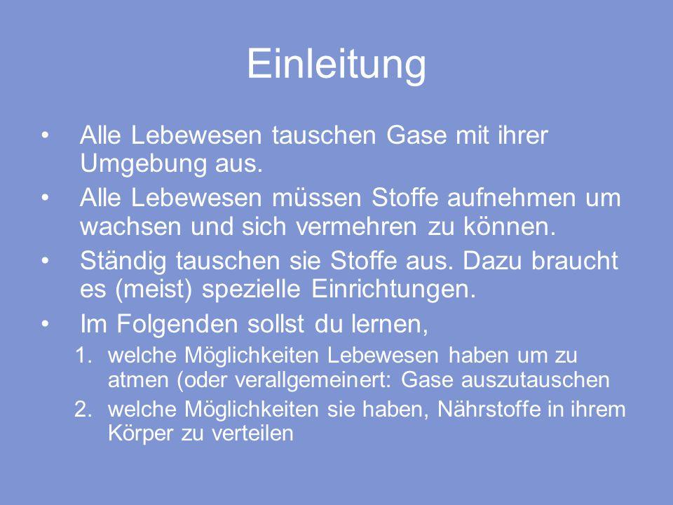 Nett Alle Systeme Des Körpers Ideen - Anatomie Von Menschlichen ...
