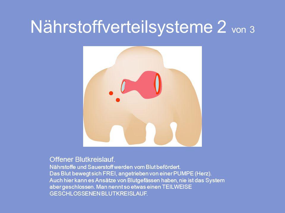 Nährstoffverteilsysteme 2 von 3