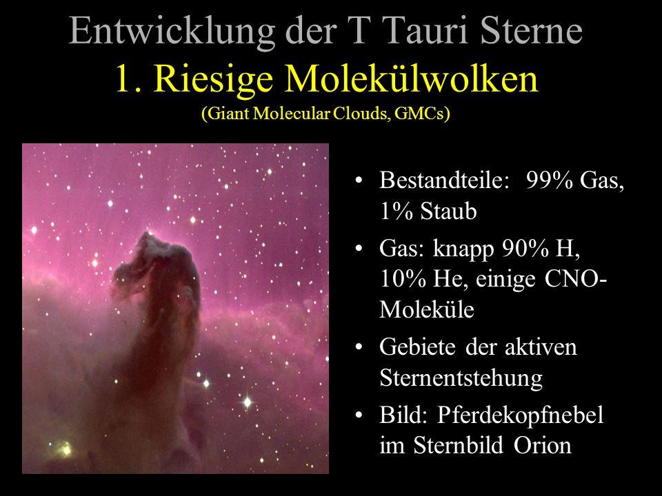 Entwicklung der T Tauri Sterne 1