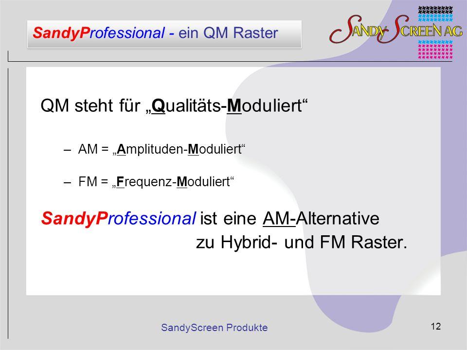 SandyProfessional - ein QM Raster