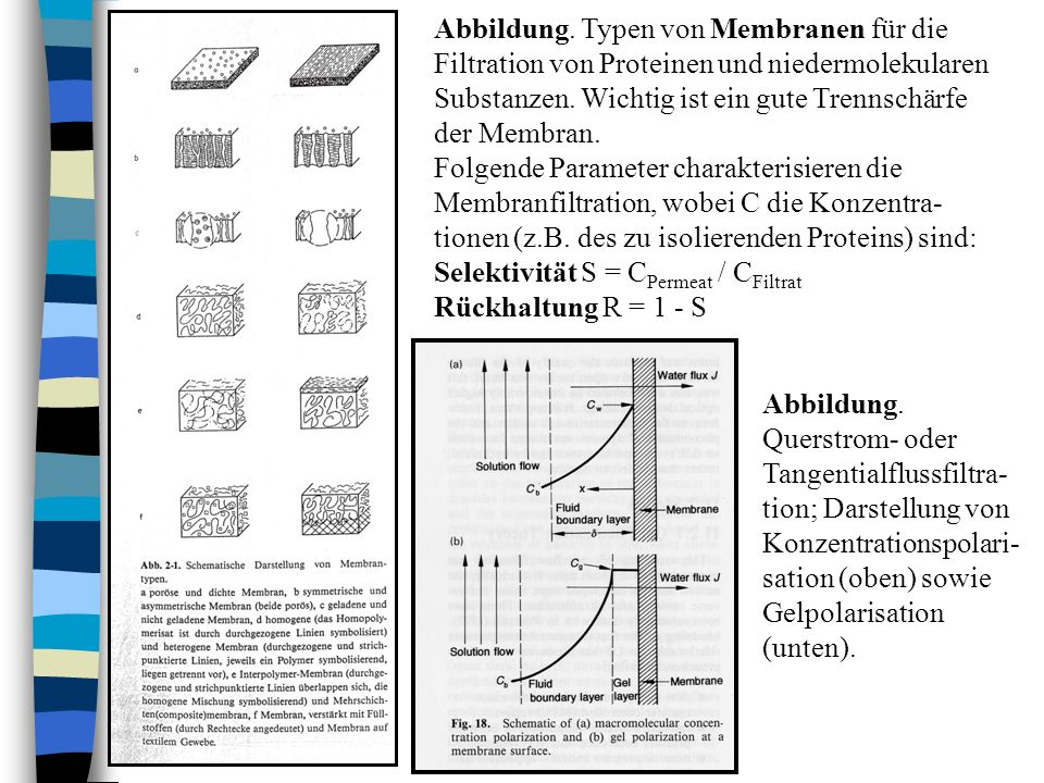 Abbildung. Typen von Membranen für die Filtration von Proteinen und niedermolekularen Substanzen. Wichtig ist ein gute Trennschärfe der Membran.