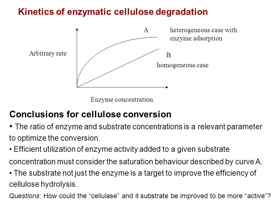 Kinetics of enzymatic cellulose degradation