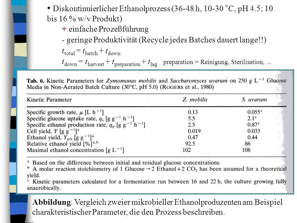 Diskontinuierlicher Ethanolprozess (36-48 h, 10-30 °C, pH 4