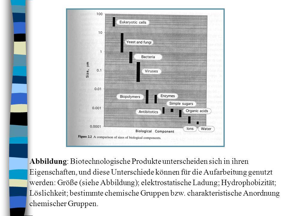 Abbildung: Biotechnologische Produkte unterscheiden sich in ihren Eigenschaften, und diese Unterschiede können für die Aufarbeitung genutzt werden: Größe (siehe Abbildung); elektrostatische Ladung; Hydrophobizität; Löslichkeit; bestimmte chemische Gruppen bzw.