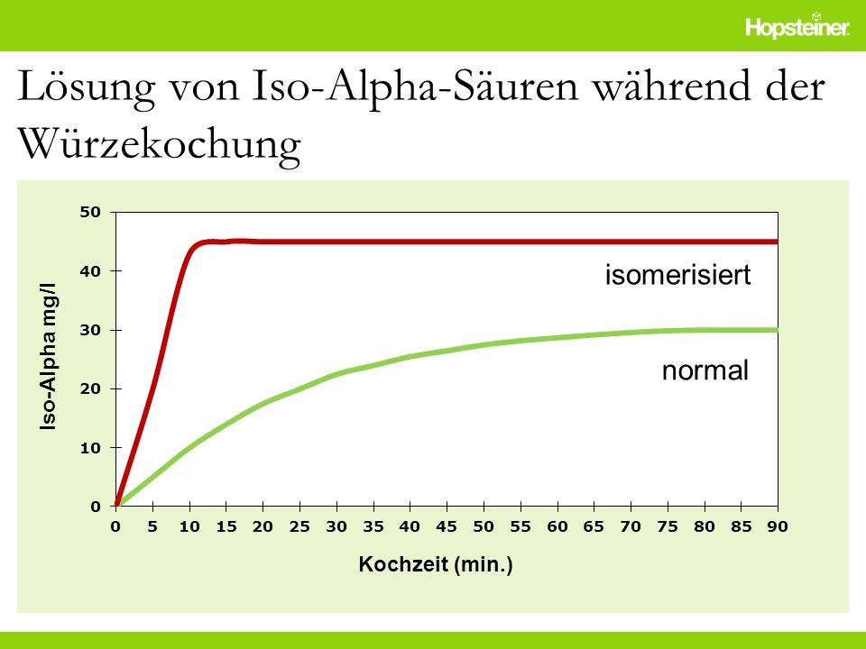 Lösung von Iso-Alpha-Säuren während der Würzekochung