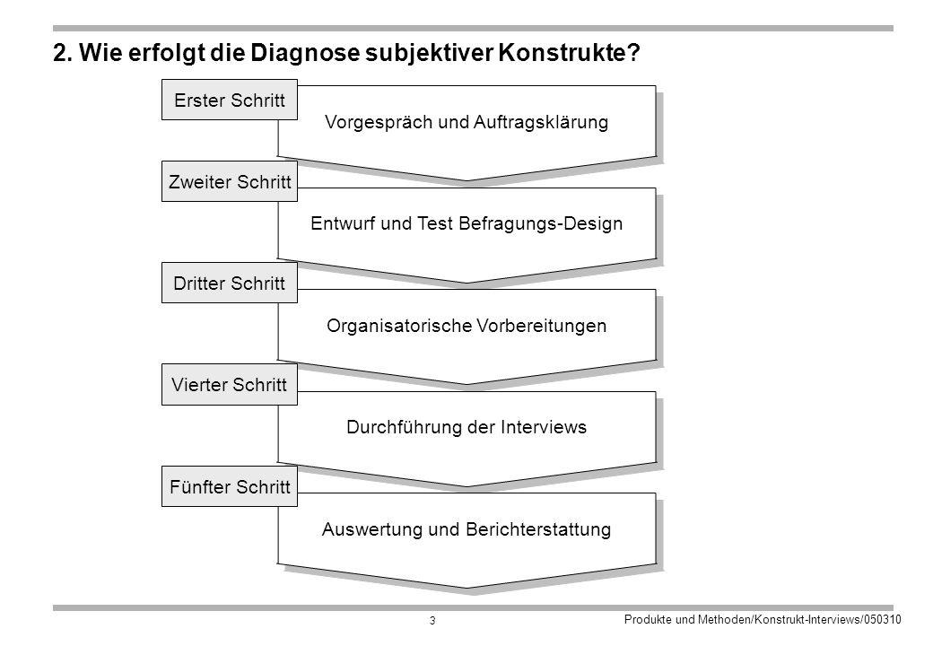 2. Wie erfolgt die Diagnose subjektiver Konstrukte