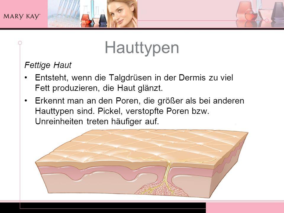 Hauttypen Fettige Haut