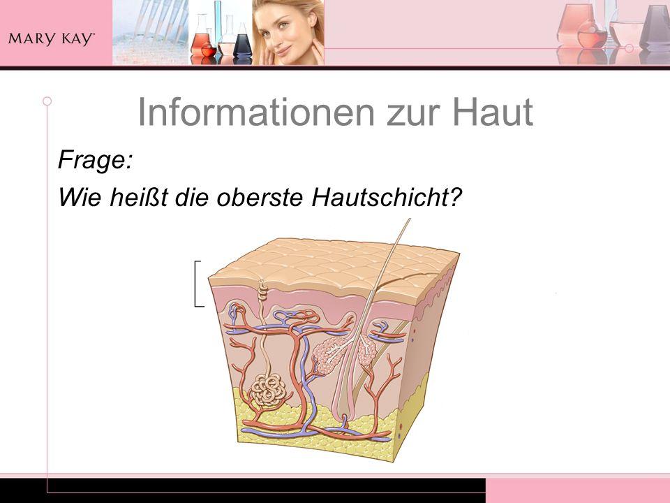 Informationen zur Haut