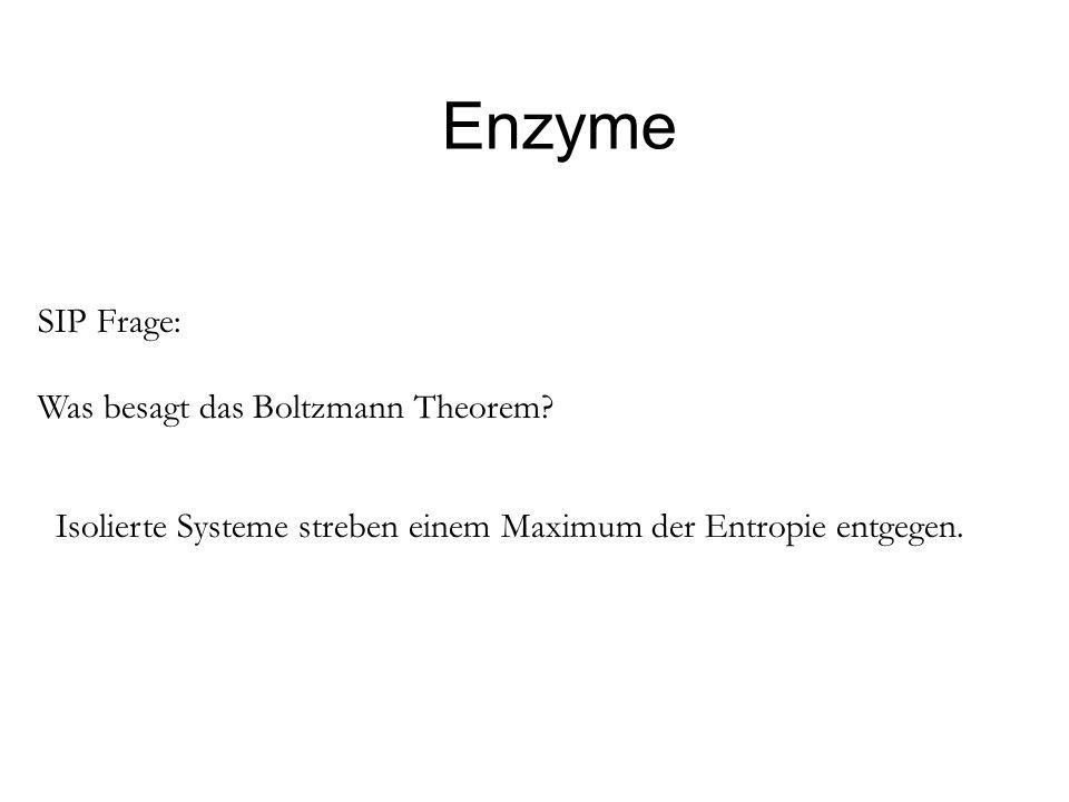 Enzyme SIP Frage: Was besagt das Boltzmann Theorem