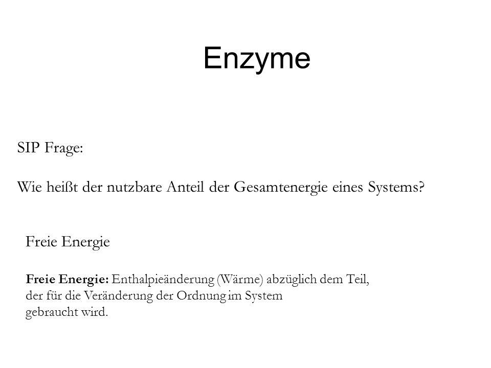 Enzyme SIP Frage: Wie heißt der nutzbare Anteil der Gesamtenergie eines Systems Freie Energie.