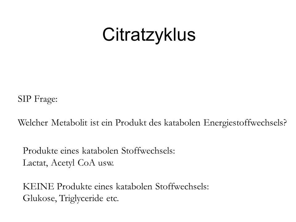 Citratzyklus SIP Frage: