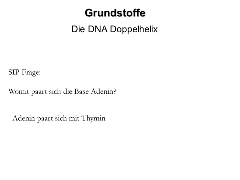 Grundstoffe Die DNA Doppelhelix SIP Frage:
