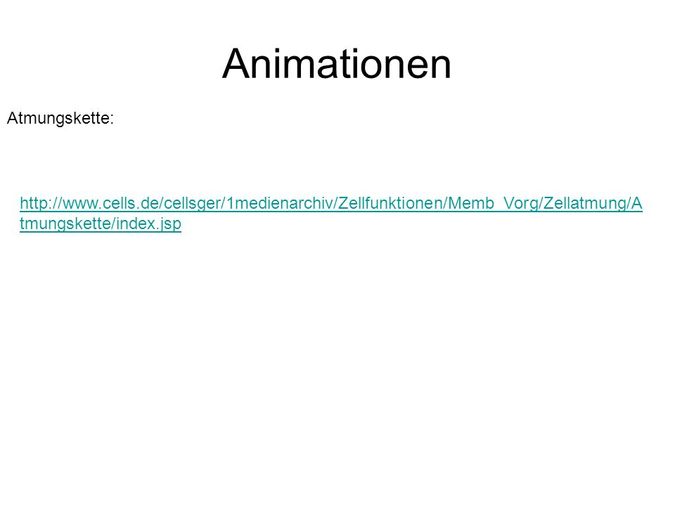 Animationen Atmungskette: