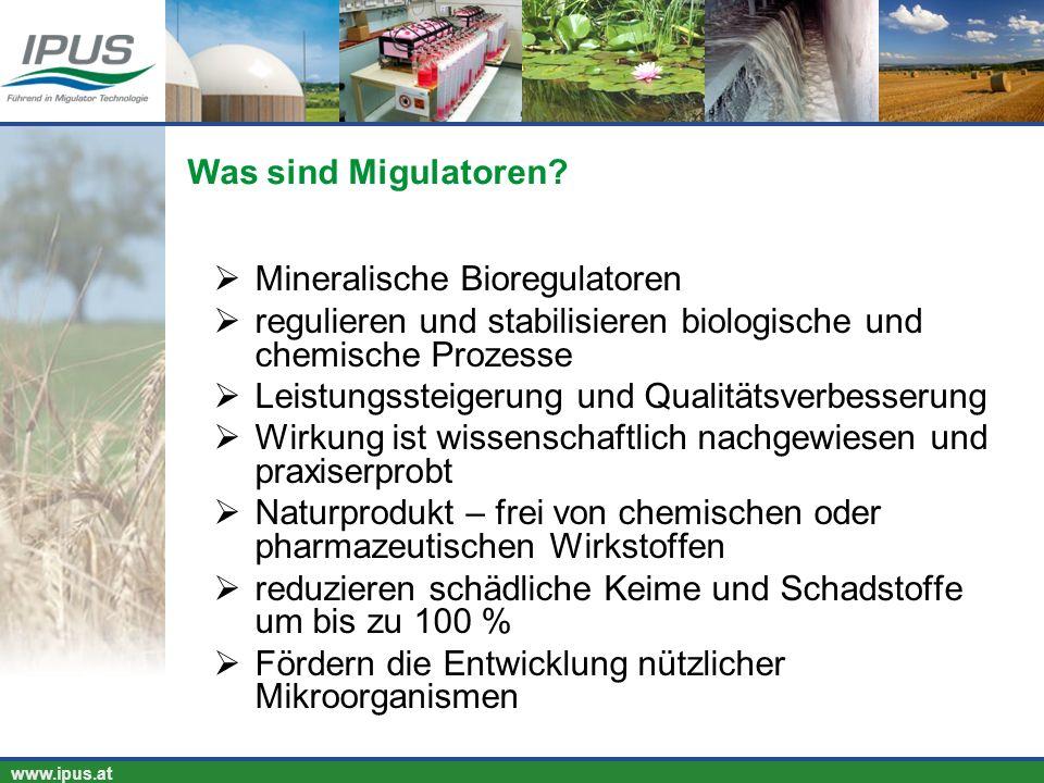 Was sind Migulatoren Mineralische Bioregulatoren. regulieren und stabilisieren biologische und chemische Prozesse.