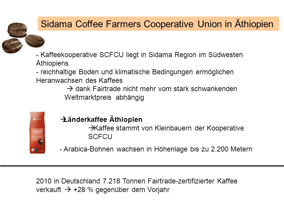 Sidama Coffee Farmers Cooperative Union in Äthiopien