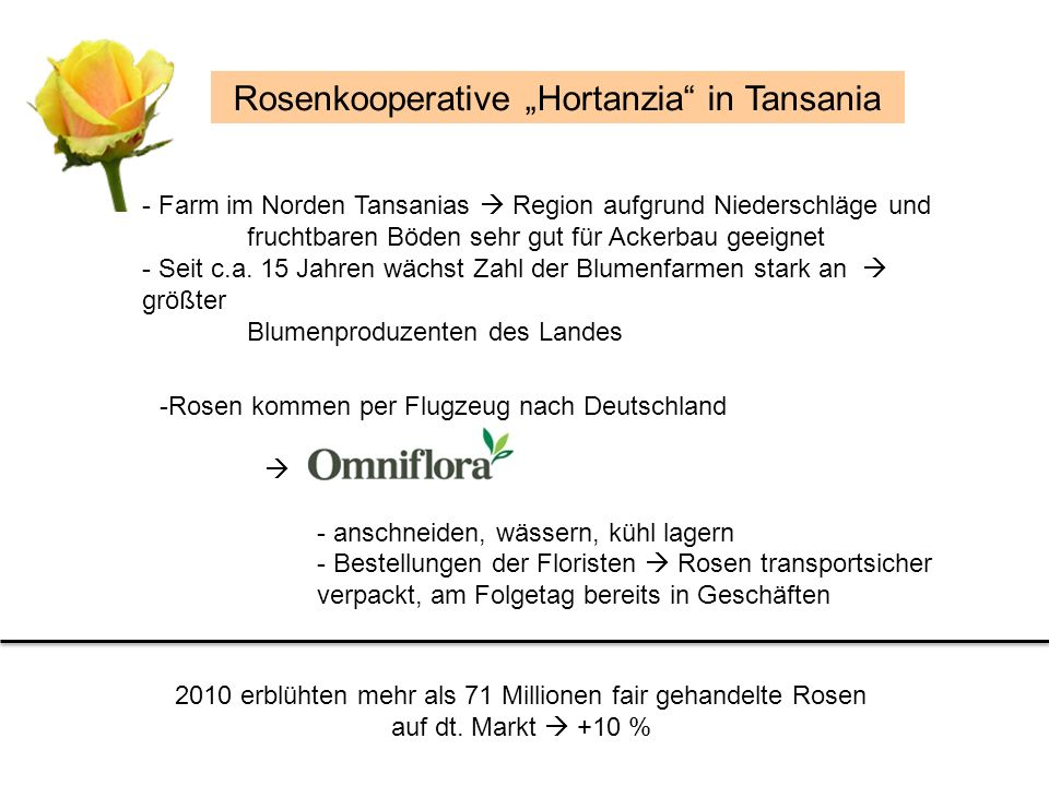 "Rosenkooperative ""Hortanzia in Tansania"