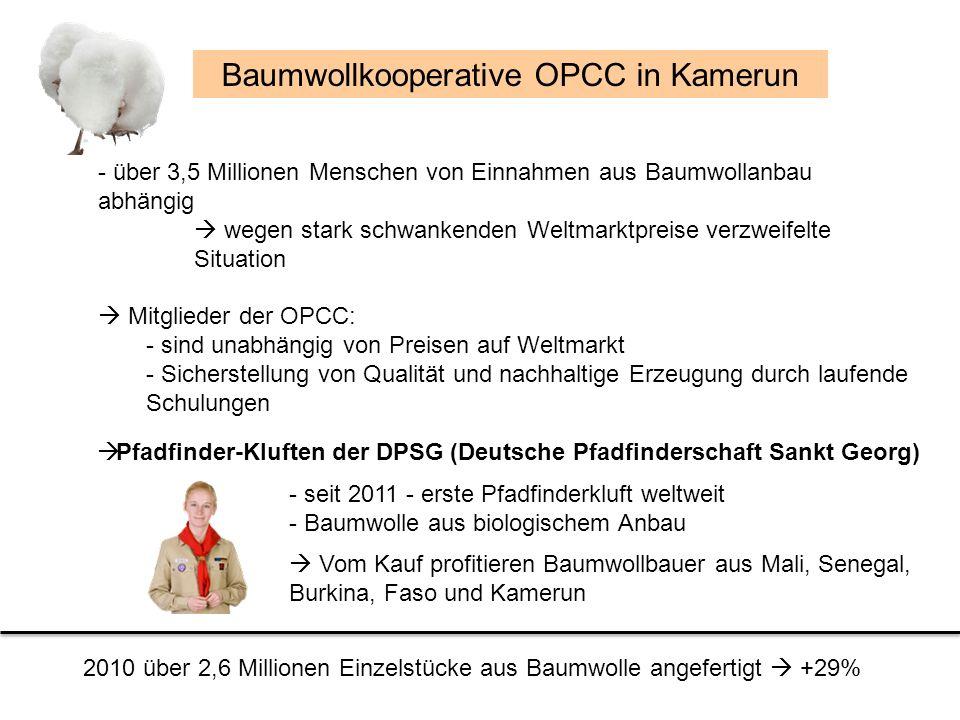 Baumwollkooperative OPCC in Kamerun