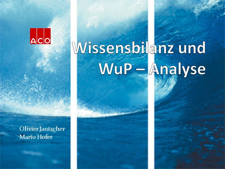 Wissensbilanz und WuP – Analyse