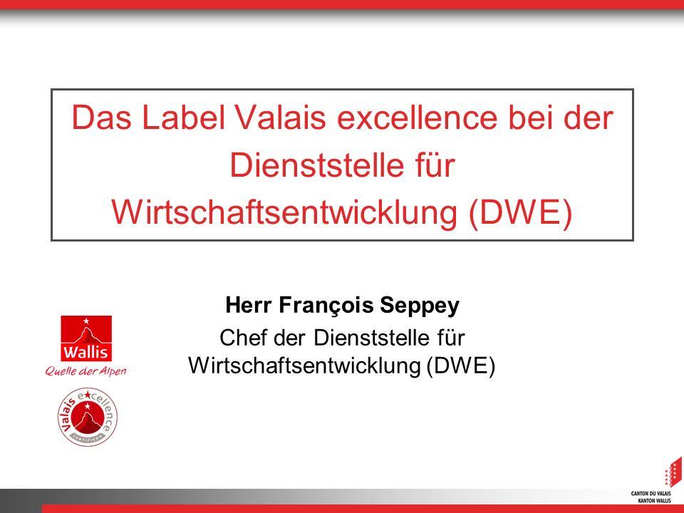 Chef der Dienststelle für Wirtschaftsentwicklung (DWE)