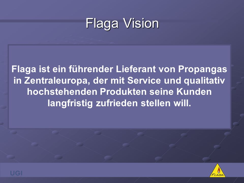 Flaga Vision