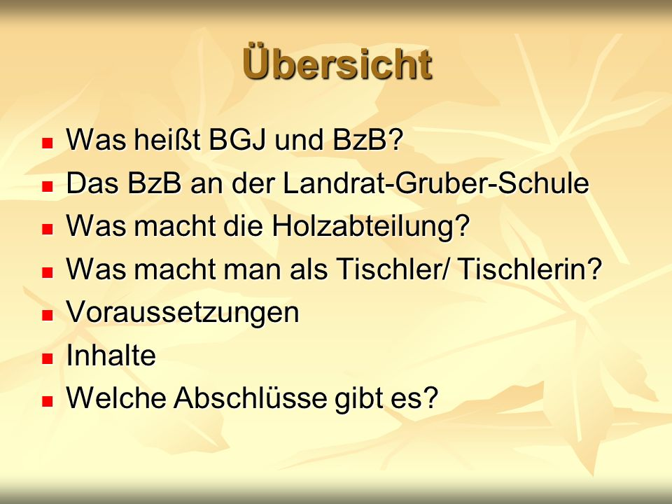 Übersicht Was heißt BGJ und BzB Das BzB an der Landrat-Gruber-Schule