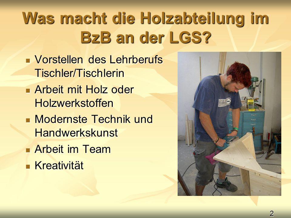 Was macht die Holzabteilung im BzB an der LGS
